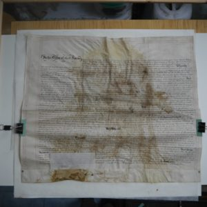 Reshaping of the parchment